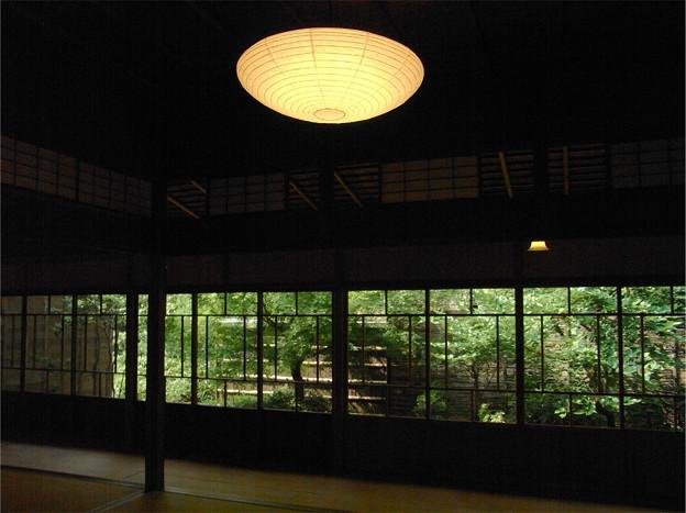 客間灯と涼の緑