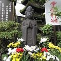 Photos: 花菩薩