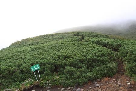 利尻岳-20100814-071443
