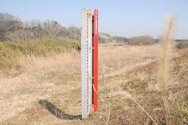 D200.10.2.23  <水位計測柱に枯草>