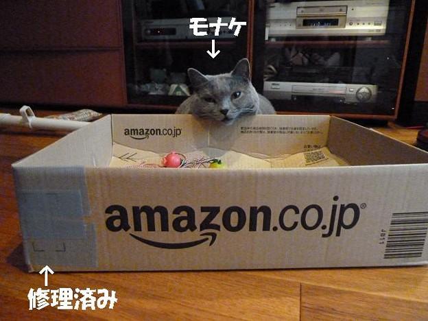 修理した箱
