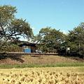 写真: 秋の小湊鉄道2010 13