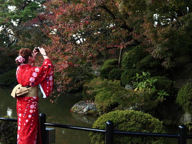京都の清水寺にて紅葉の写真です。