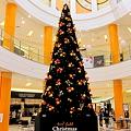 Photos: エミフルMASAKIにありますクリスマスツリーです。