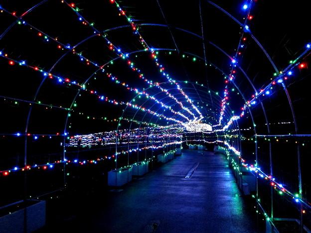 光のトンネルです。