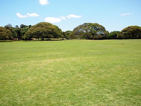 100424_Hawaii06